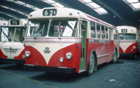 Photos, Stockholm Buses in the sixties